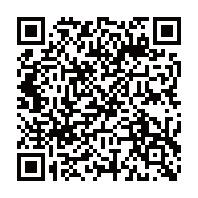 DiscussVisionNetのデモサイトQRコード
